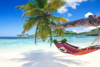 Image of Indian Ocean with a hammock hanging from palm tree
