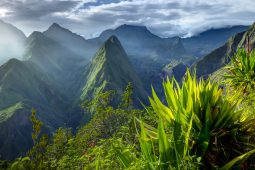 Why Réunion should be on your bucket list