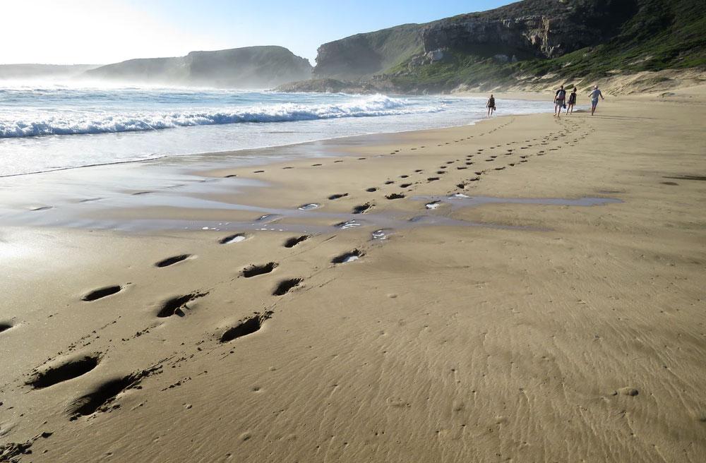Eastern Cape Beach Walks