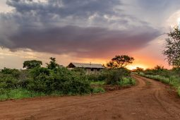 Our Africamps Glamping Experience at White Elephant Safaris